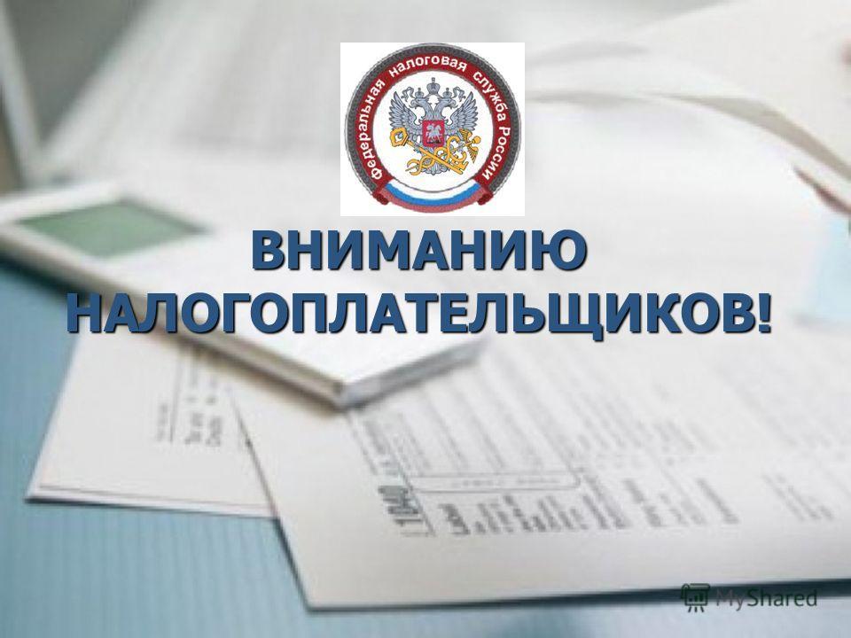налогоплательщикe_1